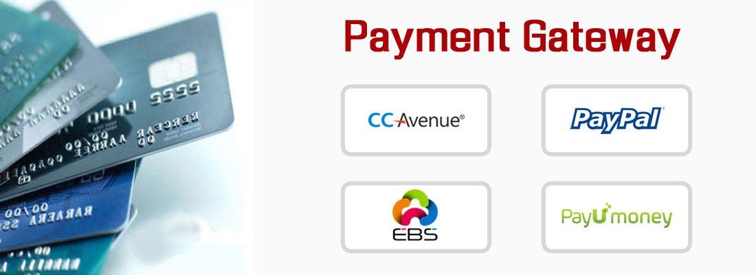Mobile App Payment Gateway Integration